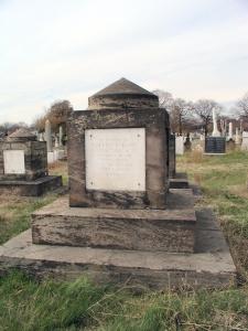 Cenotaph for Hon. Warren Ransom Davis