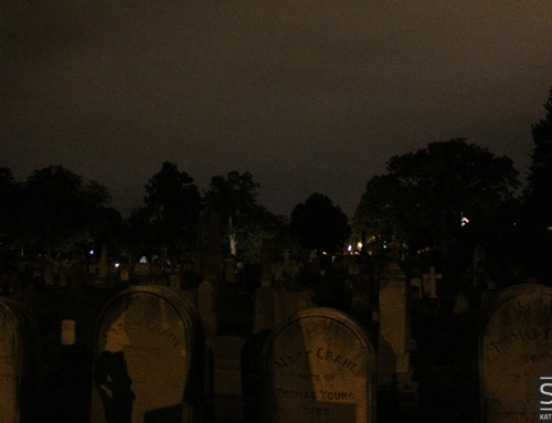 In Their Own Words: Soul Strolls at Congressional Cemetery