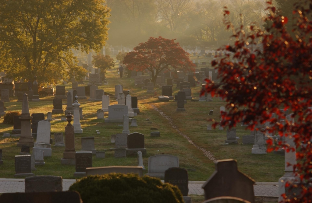 Dust to Dust: A Guide to Green Burials at Congressional